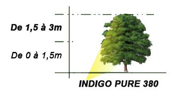 éclairage arbre par INDIGO PURE 380