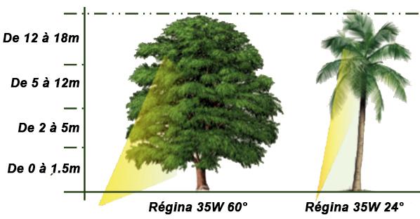 Eclairage arbre LUTEC REGINA