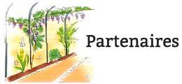 Les partenaires de Eclairage Jardin